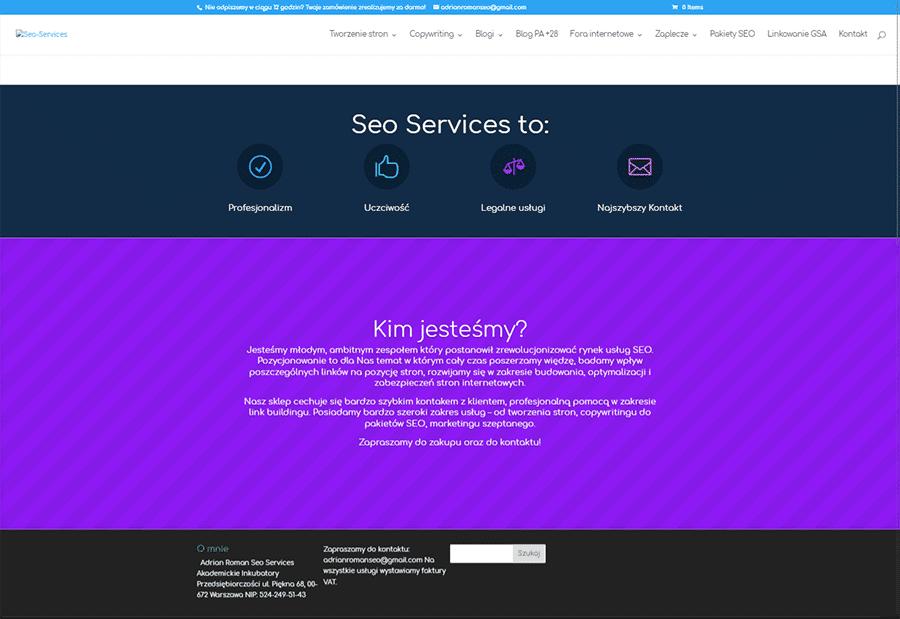 Seo-Services 1